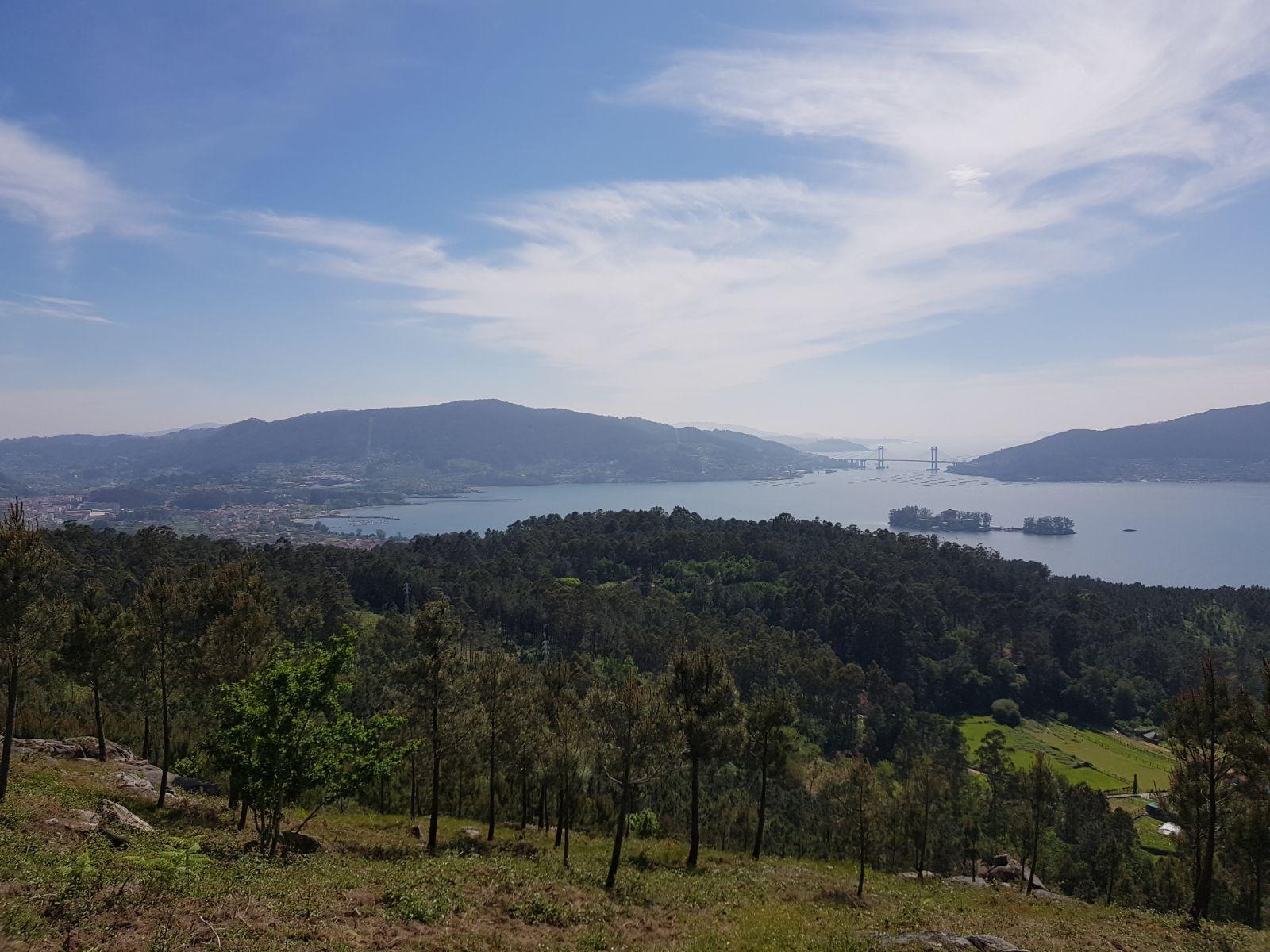 puente TAXIS REDONDELA ONLINE